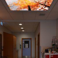 Antrim_hospital_04